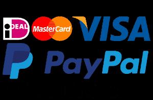 betaal logo